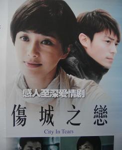 伤城之恋电视剧_伤城之恋(2008年霍建华、秦岚主演电视剧) - 搜狗百科