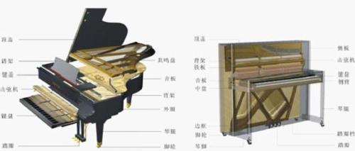 结构_钢琴结构图