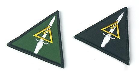三角洲部队的臂章