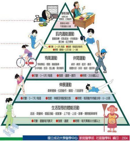 生态系统能量金字塔