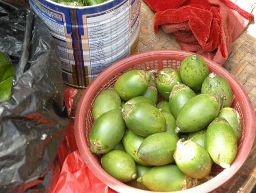 槟榔的好处,经常吃槟榔的危害图片