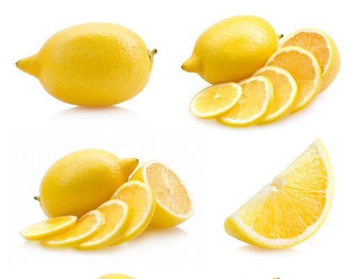 柠檬结构图片大全