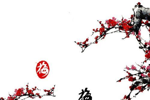 古诗文中常提到的梅,兰,竹,菊.图片