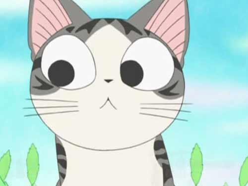 其代表作品《猫猫克克》,《我家也有大笨猫》,《猫言猫语》等无一不是