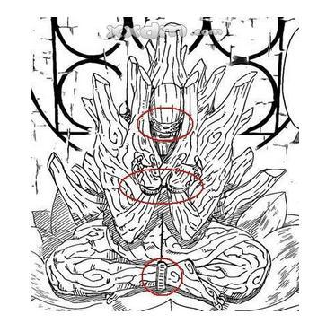 兽瞳手绘线稿