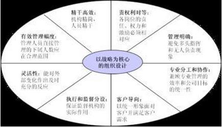 组织结构设计的基本原则