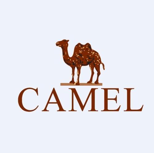 骆驼户外标志矢量图