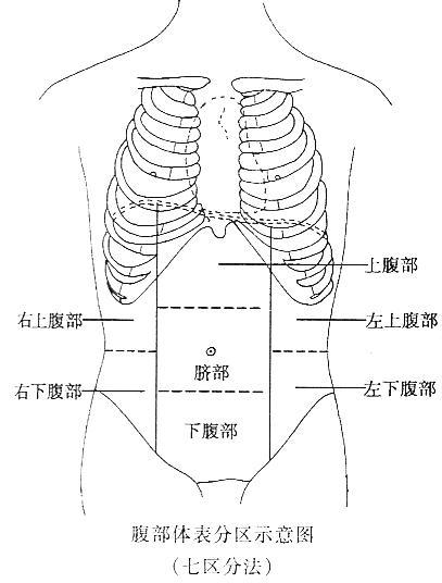 脾脓肿的结构与一般脓肿无异惟因脓腔内含有碎的脾脏