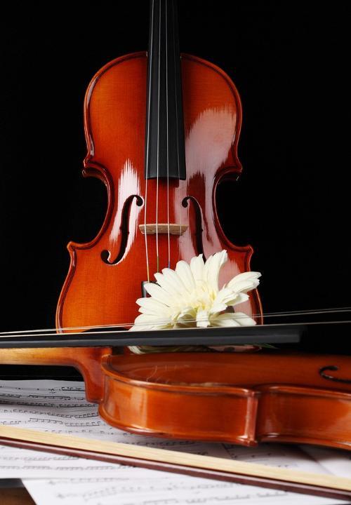 2,小提琴用过之后,应该用一块干而软的布揩去指板,琴弦及琴身上的图片