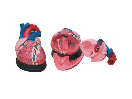 鞋子模型步骤图片