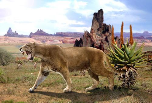 剑齿虎曾生活在亚洲