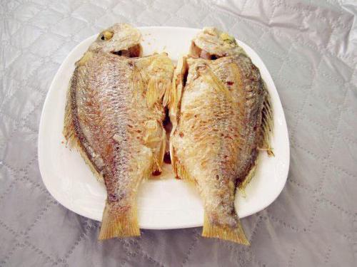 黄脚立鱼图片_咸淡水矶台钓黄脚金丝腊鱼立鱼红黑鲷鲈鱼