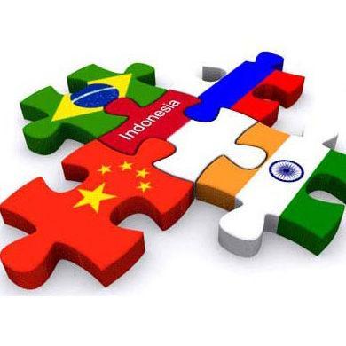 金砖国家 提高发展水平