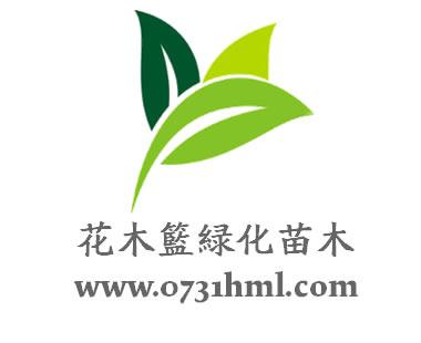 苗木合作社logo