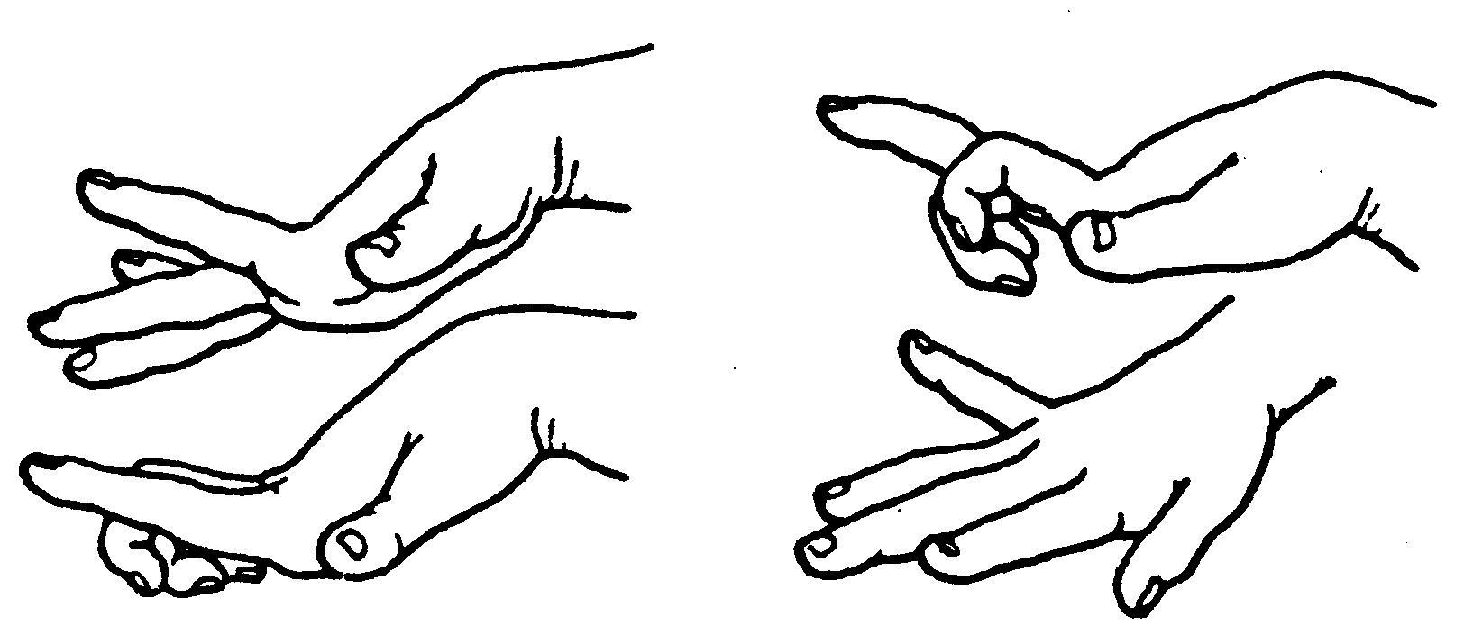 简笔画 设计 矢量 矢量图 手绘 素材 线稿 1624_715