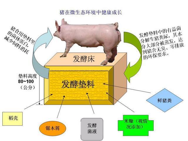 发酵剂的原理_哪种发酵剂可以发酵牧草喂羊