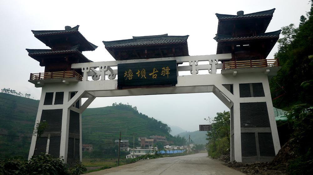宜宾塘坝茶文化旅游区图片