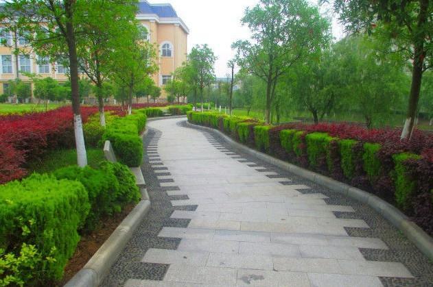 江西省外语外贸_江西外语外贸职业学院五年制大专专业