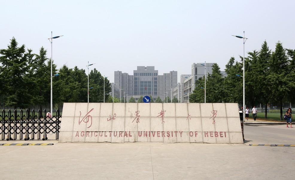 河北农业大学吧 河北农业大学选课 河北农业大学图片