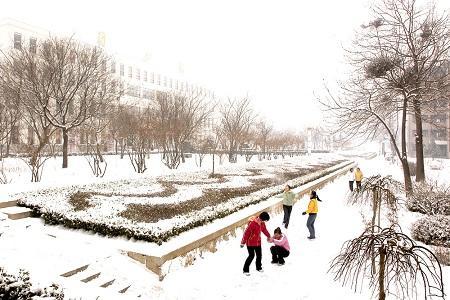 唐山学院雪景图片