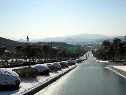 全部版本 最新版本  西京学院,青岛理工大学,大连外国语学院,长春中医