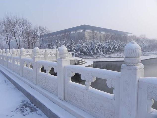 山东农业大学南校区 搜狗百科图片