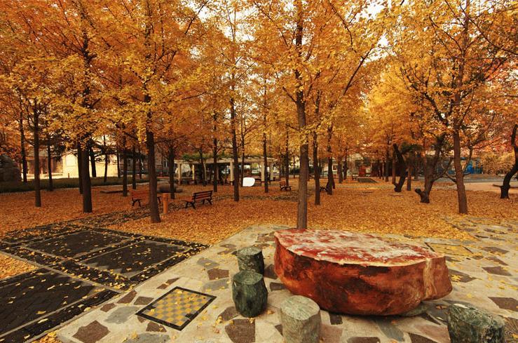 北京市育英學校風景