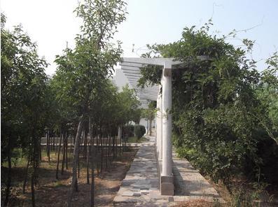 河南大学软件学院校园风光
