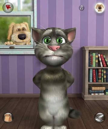 会说话的汤姆猫图片
