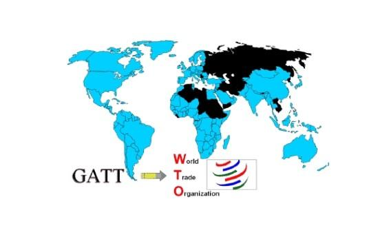 wto的组织结构