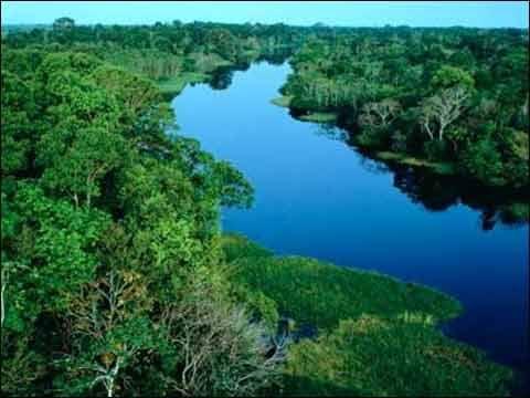 著名的亚马逊热带雨林就生长在亚马孙河流域.