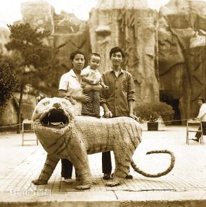 全部版本 历史版本     在北京动物园从事灵长类动物饲养工作30余年的