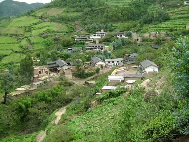 桃子箐村隶属于云南省姚安县大河口乡大白者乐行政村,属于山区.