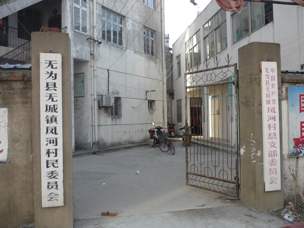 凤河村(安徽省芜湖市无为县无城镇凤河村)