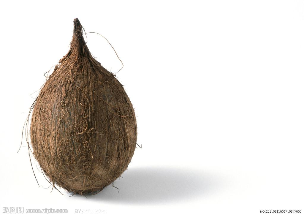 椰子(椰子树的果实) - 搜狗百科