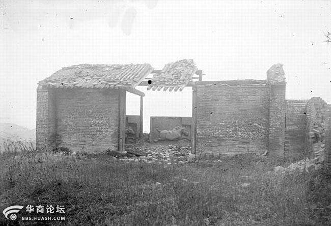 1907年法国汉学家沙畹摄昭陵六骏