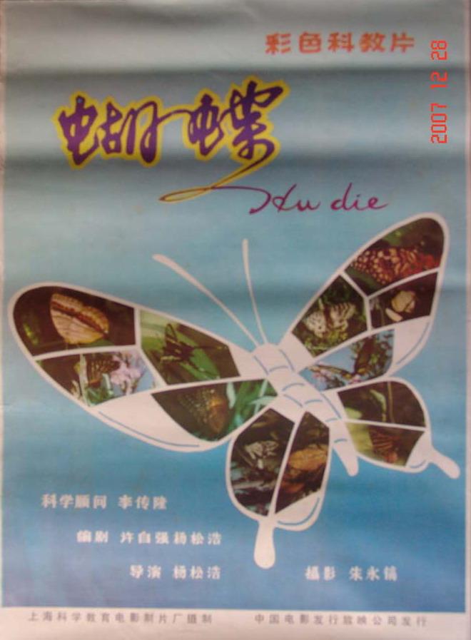 普通话手绘海报内容