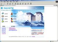 中国国家图书馆网站建设