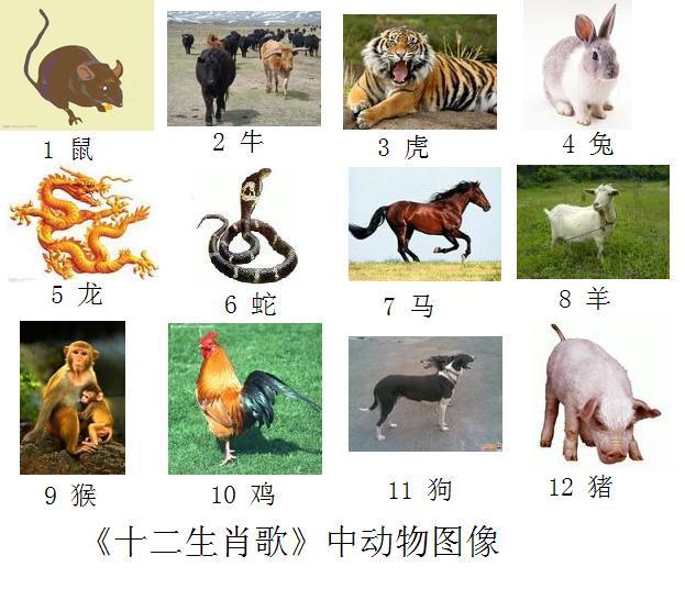 《十二生肖歌》中动物排序图像图片