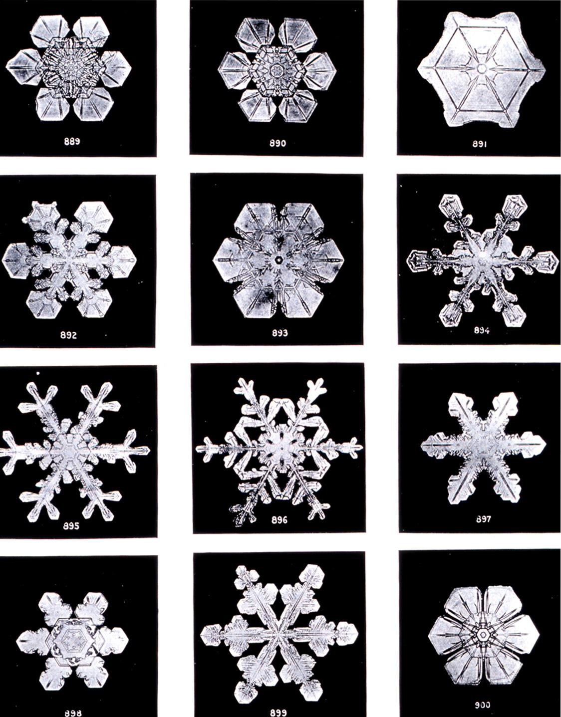 各种雪花的形状