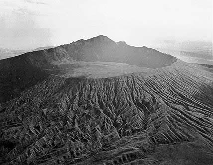 疯狂动物园新地图火山