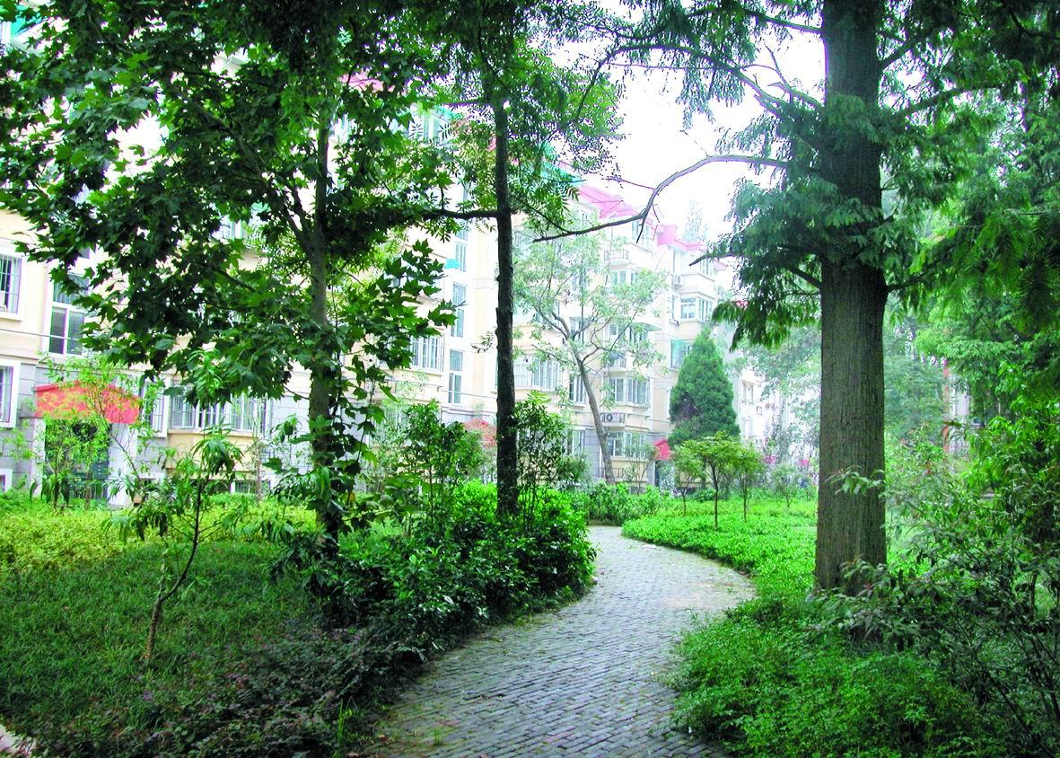 南京林业大学——曲径通幽图片