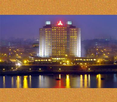 广东省东莞市石龙镇有没有整形医院