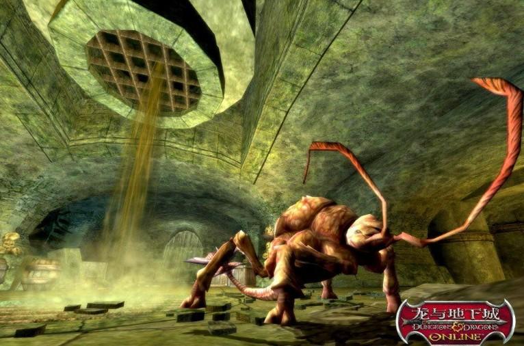 地下的动物的世界