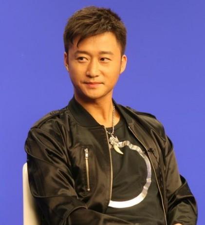 吴京(中国内地功夫演员)图片