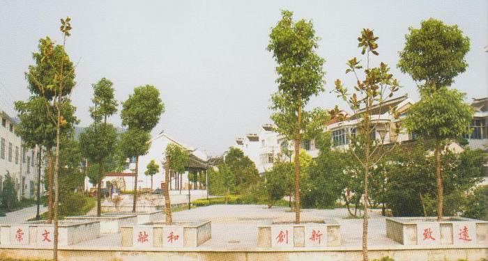 天平村(江苏苏州市吴中区木渎镇下辖村) - 搜狗百科