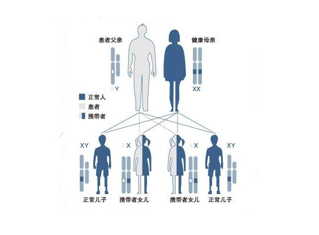常见遗传病_遗传病 - 搜狗百科