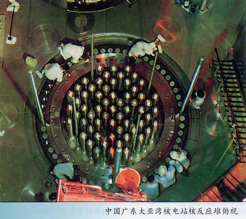 核电吉祥物矢量图