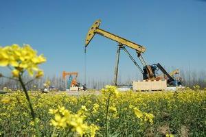 油田连续三次被评为