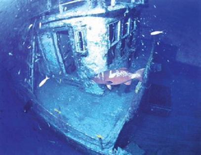 海底两万里潜水艇简易图_《海底两万里》读后感550字